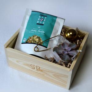 zestaw prezentowy z herbatą herbata ekologiczna złoty zaparzacz mini sukulent