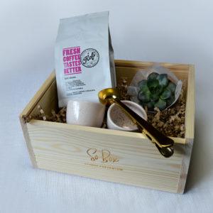 zestaw na prezent z kawą Kofobrand złota miarka do kawy z klipsem kubeczki aoomi mini sukulent box prezentowy