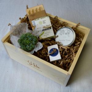 zestaw prezentowy z naturalnym mydłem oliwkowym świecą zapachową oraz mini sukulentem